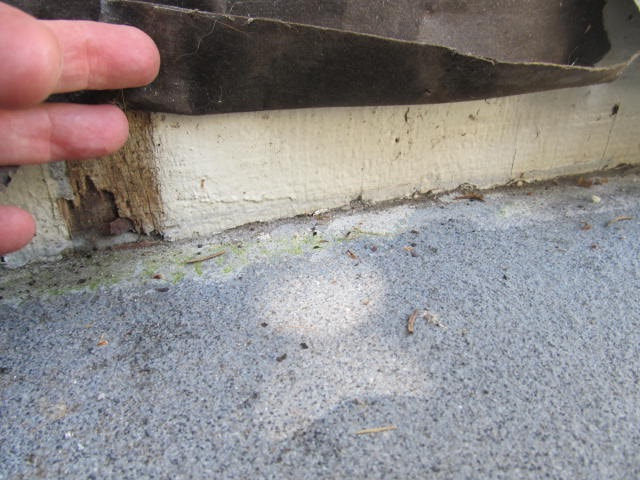 Wooden siding butted against concrete patio