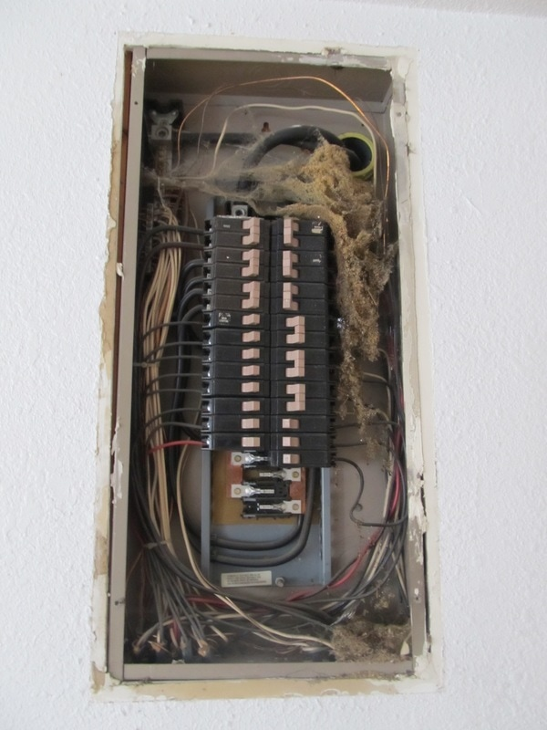 Inside of an electrical service panel filled with cobwebs and insect debris.